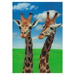 3D-Karte Giraffen
