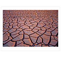 Künstlerpostkarte van Hoog -Desert-