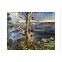 Künstlerpostkarte Corinth -Baum am Walchensee-
