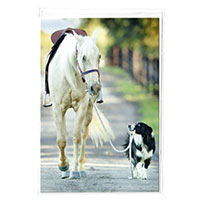 Klappkarte Pferd und Hund