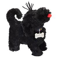 Sunny, der zauberhafte kleine Kuschel-Hund von perro negro