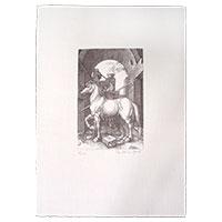 Dürer, Albrecht - Das kleine Pferd